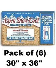 "(6) PPS Pkg # 8IP 30"" x 36"" Aspen Snow-Cool Evaporative Swamp Cooler Pad"