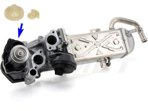 AGR Ventil Reparatursatz für VW Audi Seat Skoda 1.6 TDI CR CAYB CAYC CAYD CAYE