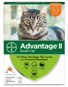NEW-ADVANTAGE-II-FOR-SMALL-CATS-8-WEEKS-amp-OLDER-5-9-LBS-4-DOSES-4-MONTH-SUPLY