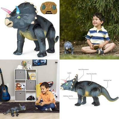 Kids Walking Dinosaur Triceratops 14.5 Inches Remote Control With Shaking Head Action Figures