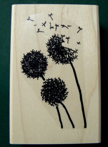 P4 Dandelion flowers rubber stamp 1.7x3 Wood mounted