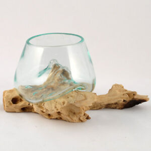 Details zu Wurzel mit Glas, Ø ca. 12 cm, kleine Kugelvase Glasvase auf Holz  Glas Deko Ideen