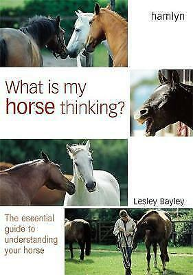 1 of 1 - What is My Horse Thinking?, Bayley, Lesley, New Book