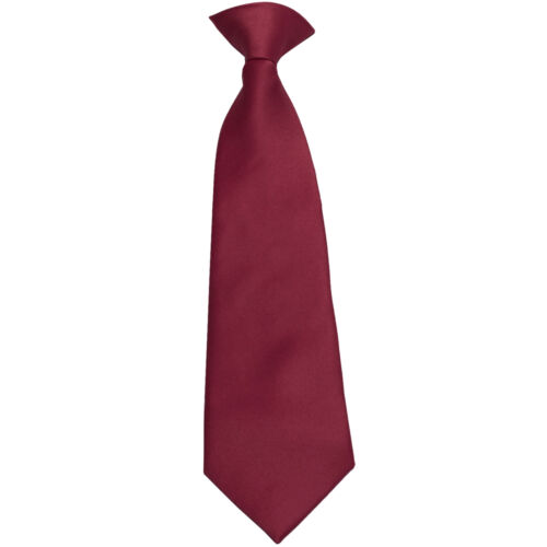 New Vesuvio Napoli Kid/'s Boy/'s Clip On Pre-tied Necktie size 14 Burgundy Party
