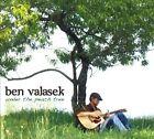 Under the Peach Tree by Ben Valasek (CD, 2010, Ben Valasek)
