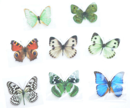 3D Schmetterlinge Magnet 24er Set realistisch Wandtattoo Wandsticker Wanddeko