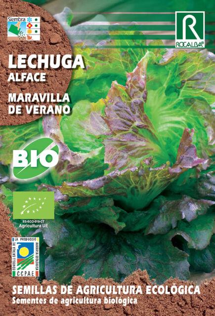 Semillas ECOLOGICAS Lechuga Maravilla de Verano , Sobre 2 gr.