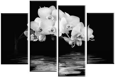 LARGE WHITE ORCHIDS CANVAS ON BLACK WATER REFLECTION FLORAL WALL ART PICTURE 1M