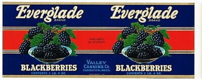 ORIGINAL 1950S TIN CAN LABEL VINTAGE CARNATION WASHINGTON EVERGLADE BLACKBERRY