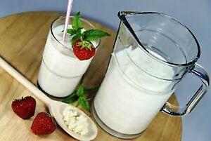 8g-Milchkefir-100-Bio-tibetanischer-Kefir-Kefirknolle