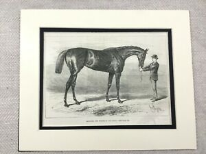 1882-Print-Racehorse-Winner-Derby-Racecourse-Horse-Art-Antique-Original