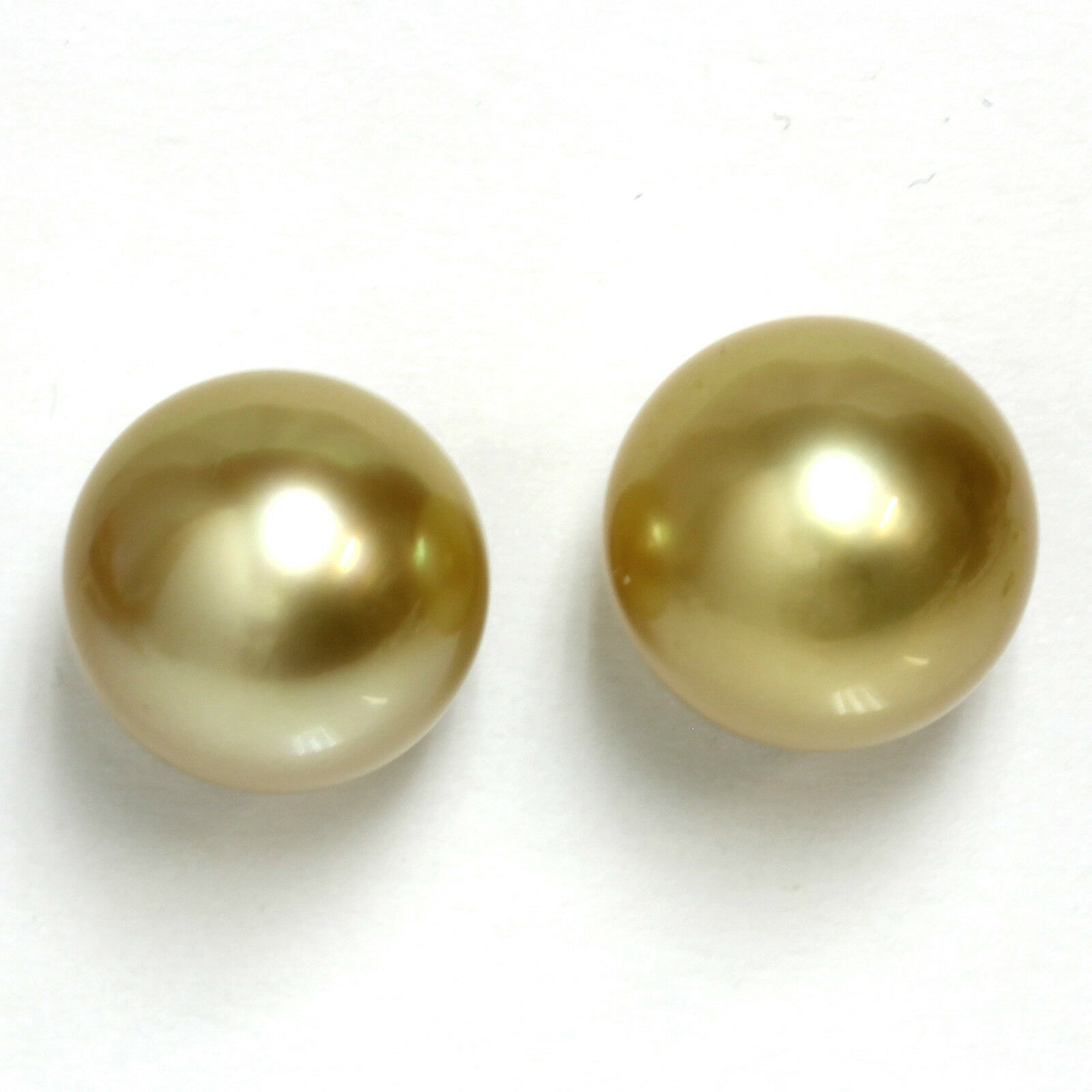 South Sea Pearl Stud Earrings 12 MM  golden 14kt White gold