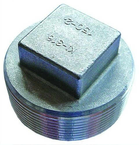 "SSQPBT08 1//2/"" BSPT Square Headed Plug Stainless Steel Fitting"