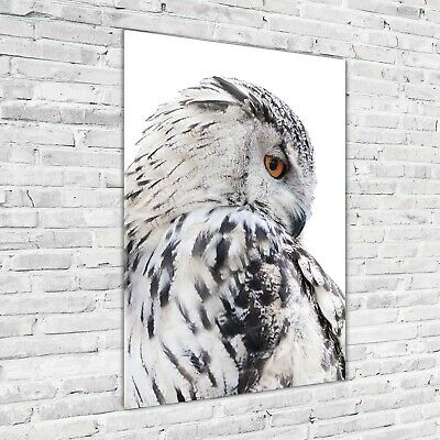 Wandbild Kunst-Druck auf Hart-Glas hochkant 70x140 Weiße Eule