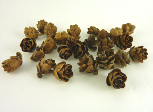 H081 24 pieces Dollhouse Miniature Tiny Holiday Pine Cones