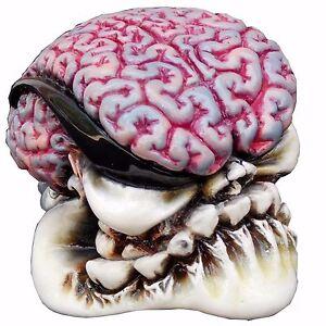 Octane-Brain-shift-knob-manual-Mustang-M12x1-25