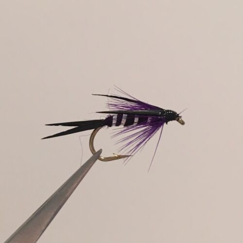 12 x PURPLE PRINCE NYMPH TROUT FLY FISHING FLIES MIXED SIZES 10, 12, 14
