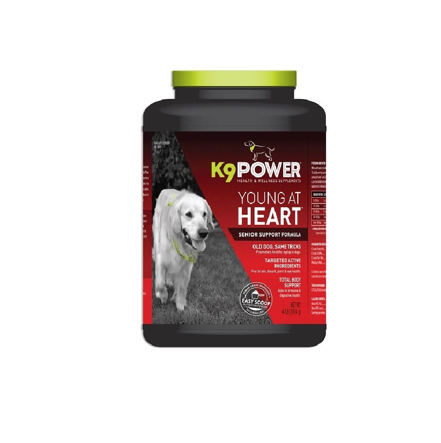 K9 POWER Young at Heart Senior Supplement for Dog  Joints Brain Function 4Lbs