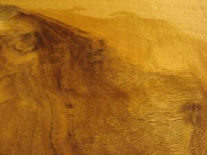 Walnut-Veneer-20-sheets-60-cm-by-30-cm-352