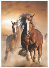 Website Password Keeper Internet Username Organizer Book Login Horses