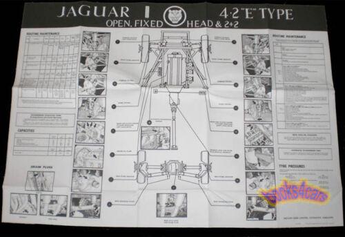 JAGUAR XKE 4.2 SHOP XK-E MAINTENANCE E-TYPE MANUAL CHART E-TYPE ROADSTER COUPE 6
