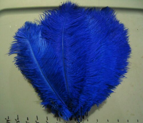 """1 Ostrich herl feather..9-11/"""" Plumes/>Drabs/>10 Color Choices/>feathers"""