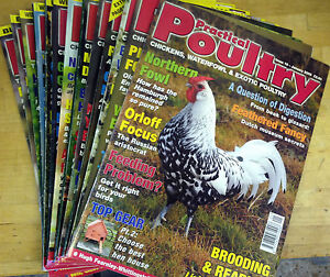 Practical-Poultry-Magazine-Chicken-Ducks-Game-Goose-Quail-Rabbits-10-to-21-2005