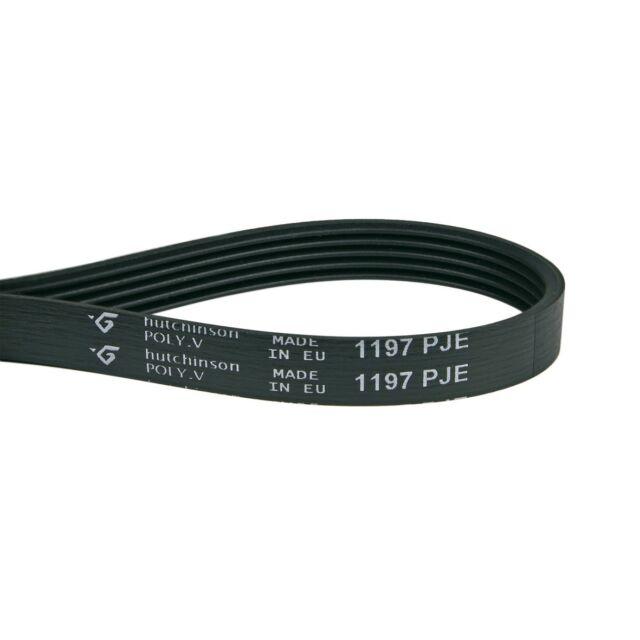 Vacuum Cleaner Belt Ribs Drive 1197pj5ma Like Siltal Cortina