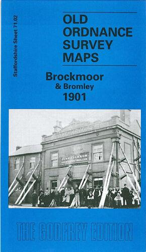 OLD ORDNANCE SURVEY MAP BROCKMOOR BROMLEY 1901 BANK STREET THE DELL KINGSWINFORD
