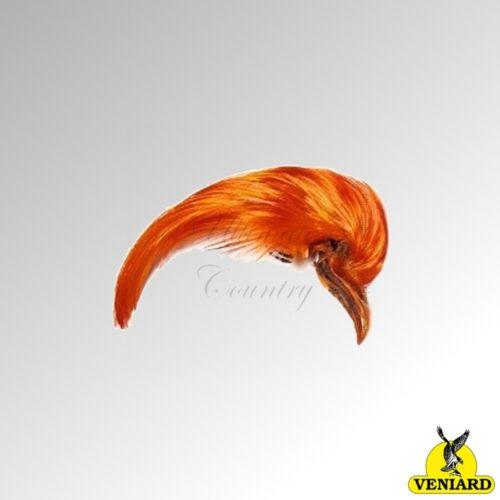 GPTOP1 /& GPTCD Veniard Golden Pheasant Topping Crest