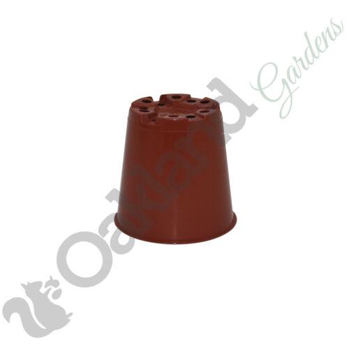 "200 x 6 cm vasi piante piccole in Plastica Terracotta Vaso di Fiori Cactus qualità 2.5/"""