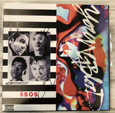 5 SECONDS OF SUMMER 5SOS #87 Framed Photo /& Autograph Display