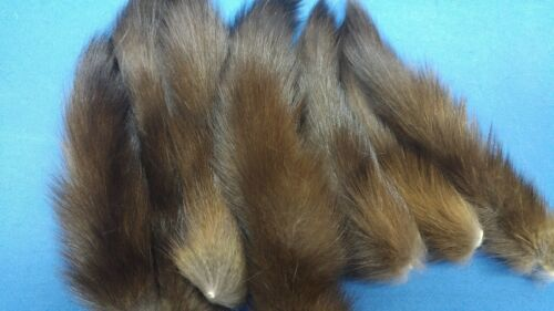 dressed fresh cut Canadian SABLE marten tails natural color FREE SHIPPING!!