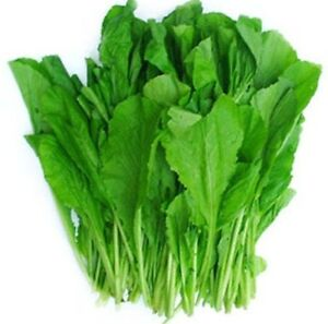 how to cut mustard greens