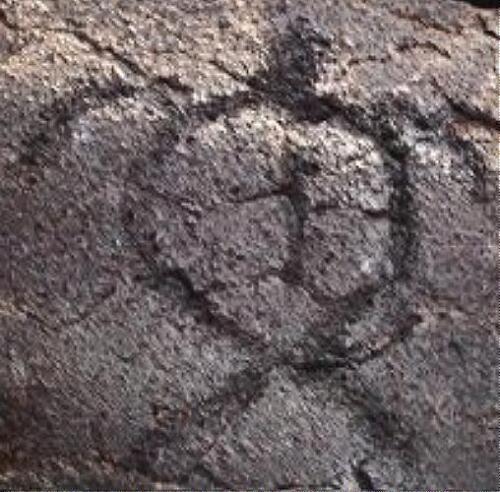 24mm Heavy Solid Sterling Silver Hawaiian Petroglyph Honu Sea Turtle Pendant