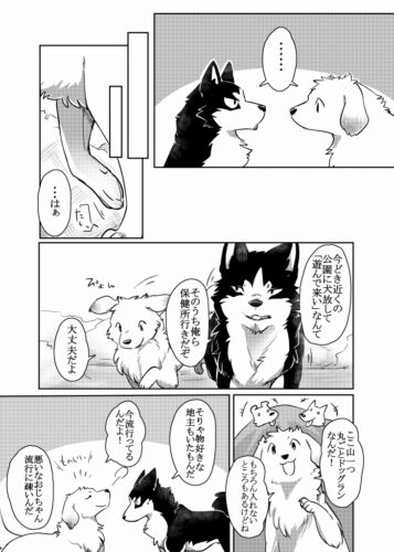 furry dog More,more B5 38pages D-Point Doujinshi KEMONO