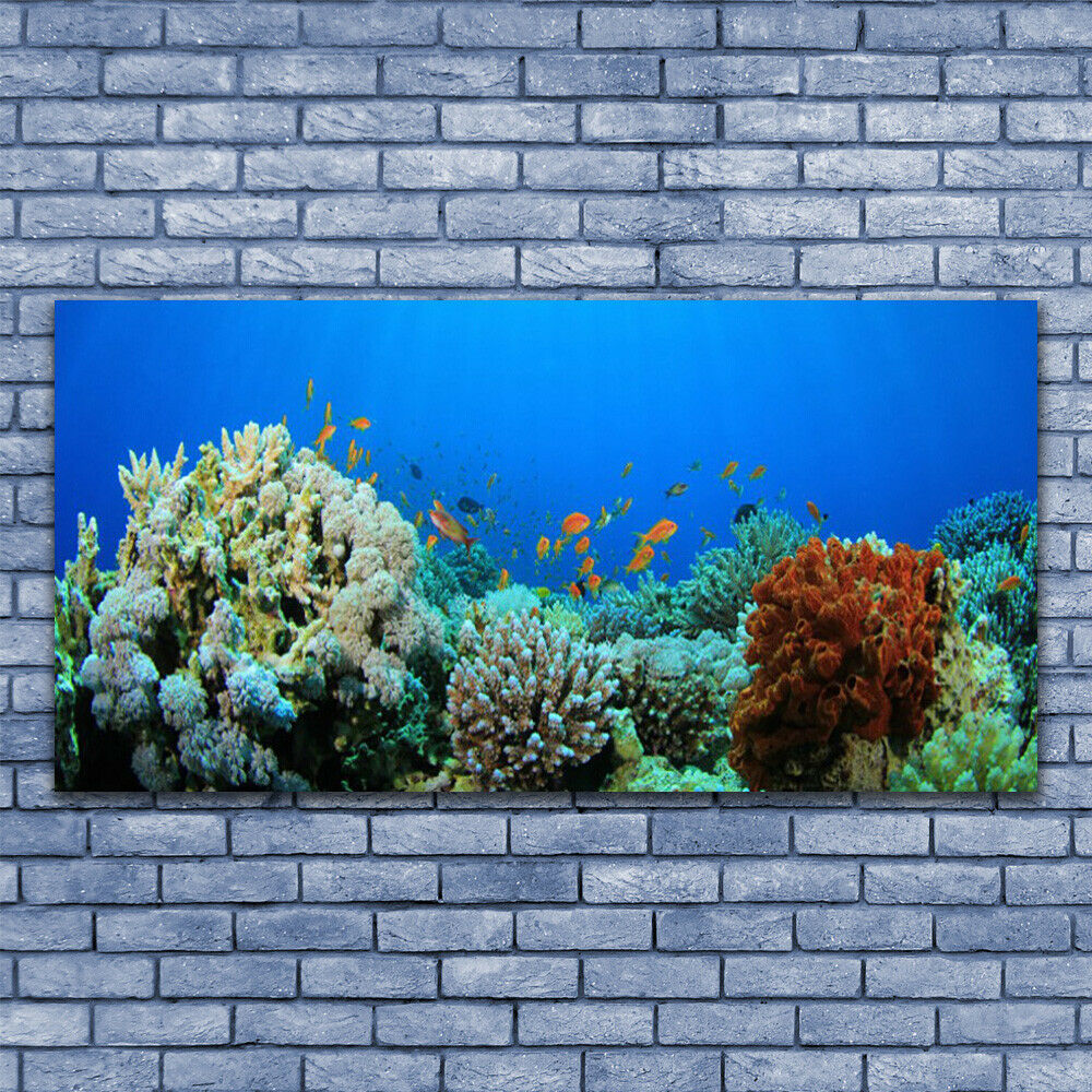 Canvas print Wall art on 140x70 Image Picture Coral Coral Coral Reef Nature 0ff0c4
