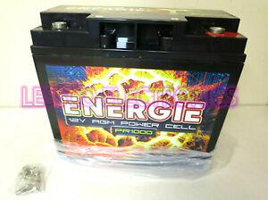 Energie PR1000 Power Cell Source Reikken Car Battery 12 Volt / 1000 Watt Sealed