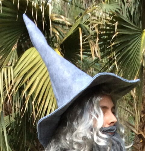 Wizard Hat Mage Gandalf Costume Witch Hobbit Lord of the Rings Halloween