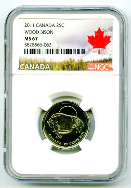 BU Canadian Quarter Canada 2011 25 cents Coloured Bison Nice UNC from roll