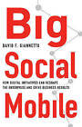 Big Social Mobile: How Digital Initiatives Can Reshape the Enterprise and Drive Business Results by David F. Giannetto (Hardback, 2015)