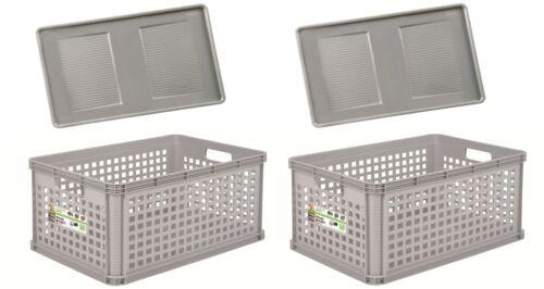 2 x Robusto-Box Basket mit Deckel 64 L grau Aufbewahrungsbox Box Kiste