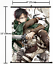 HOT-Anime-Attack-on-Titan-Wall-Poster-Scroll-Home-Decor-Cosplay-1460 thumbnail 1