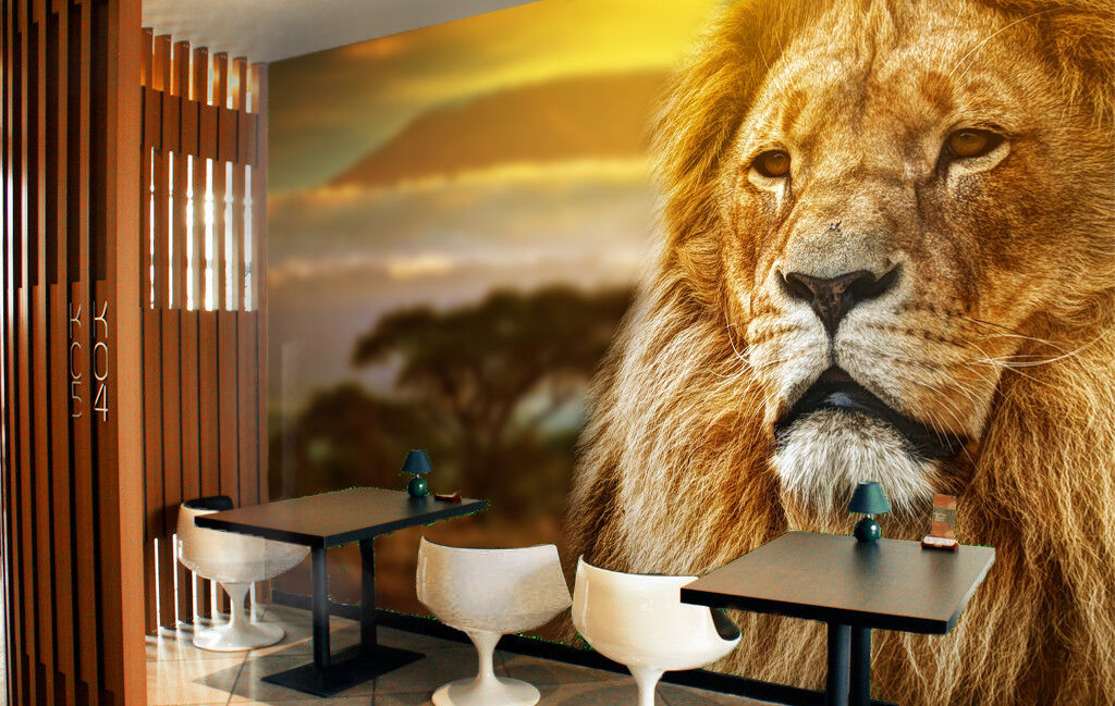 3D 3D 3D Sunset Lion Looking 8943 Paper Wall Print Wall Decal Wall Deco Indoor Murals 8c34ac
