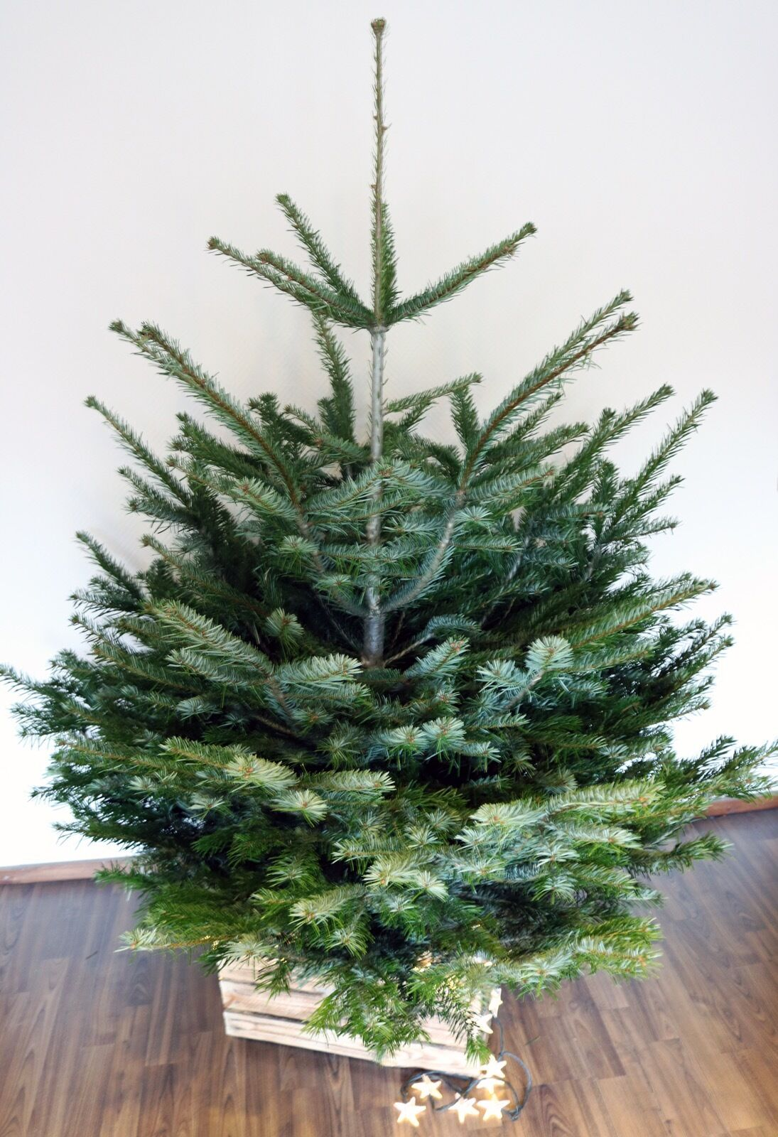 Base per albero albero albero di Natale CASSETTA FRUTTA supporto baumhalter LEGNO RUSTICO 1b5a1e