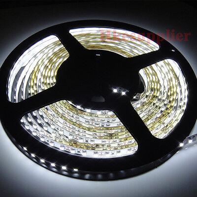 Cool White 5M 3528 SMD Flexible LED Strip Light 600leds 12V