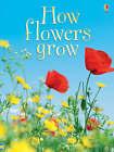 How Flowers Grow by Emma Helbrough (Hardback, 2006)