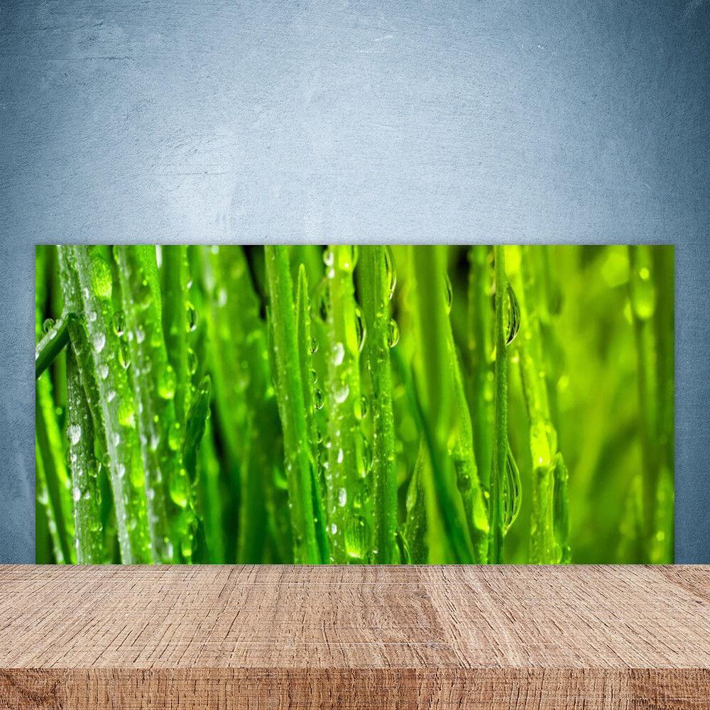 Cupboard kitchen glass wall panel 100x50 nature grass