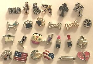 Authentic Origami Owl Charms - NEW - Retired | eBay | 207x300
