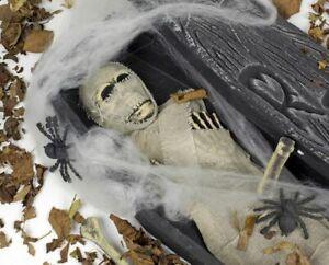 Mumie Sarg + Deko 68,5 x 22 Totenkopf Leiche Spinnen Knochen Halloween Horror